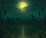 Full moon river landscape illustration. Royalty Free Stock Photography