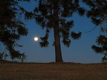 Full moon rural scenery Royalty Free Stock Image