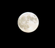 Full Moon in September Stock Photography