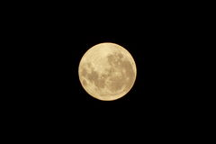 Full moon shy in a clear sky Royalty Free Stock Images