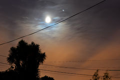 Full Moon Sky and Palm Tree Silhouette. Full moon overlooking telephone lines and a palm tree in silhouette at night Stock Photography