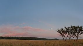 The full moon before sunrise Royalty Free Stock Photography