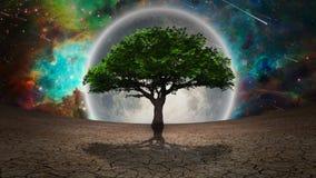 Full moon tree. Green tree in arid land. Full moon in the vivid sky. 3D rendering. Some elements credit NASA Stock Photos