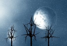 Full moon trees and snow stock image