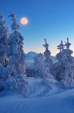 Full moon in winter Royalty Free Stock Photo