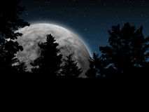 Full Moon in the Wood. Imaginary Full Moon Night in the Wood Stock Photo