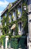 Full of nature house in Paris Stock Photo