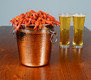 Full pail on boiled crayfishes Stock Photos