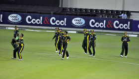 Full Pakistan Team. Pakistan Cricket Team, during second international T20 Royalty Free Stock Photo