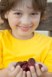 Full palm ripe cherries in hands of the boy Royalty Free Stock Images