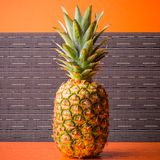 Full pineapple on gray stripes background, square shot Royalty Free Stock Image