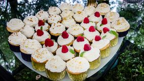 Full plate of cup cakes on party table Royalty Free Stock Images