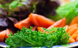 Full plate of fresh salad with tomato and lettuce. Stock Image