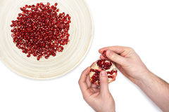 Full plate of peeled pomegranate seeds and a man de-seeding gran Royalty Free Stock Image
