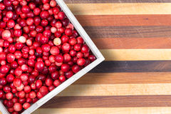 Full punnet of fresh ripe red cranberries Royalty Free Stock Photography