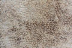Full rambakgrund av mockaskinn gillar tyg Fotografering för Bildbyråer