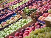 Full rambakgrund av olika frukter på ett stånd Fokus i mitt Arkivbild
