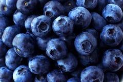 Full rambakgrund för blåbär Arkivbild