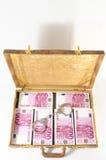 full resväska för sedlar Royaltyfria Bilder