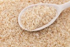 full ricesked Arkivbilder