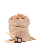 Full sack with walnuts and nutcracker. Stock Photos