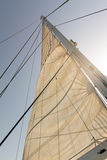 Full sail. Sail and mast of a yacht with sun behind Stock Photos