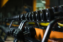 A full set of dumbbells, stuff for effective magnification of power and muscle size on a dark blurred background. Iron dumbbells, equipment for weight lifting Royalty Free Stock Image