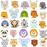 Full set of funny cartoon animals Royalty Free Stock Photography