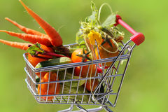 Full shopping trolley with vegetables. On green background Royalty Free Stock Photo