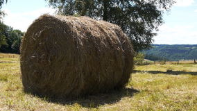 Full shot of hay bale in French landscape stock video