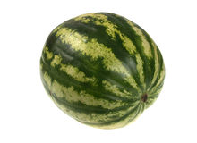 Full single striped green watermelon. Royalty Free Stock Images