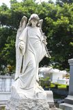 Full size adult female angel with flowers in cemetary with trees and over graves behind her royalty free stock photo