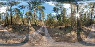Full spherical hdri panorama 360 degrees angle view on gravel pedestrian footpath and bicycle lane path in pinery forest in sunny royalty free stock image