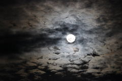 Full Spooky Moon. A full spooky moon in the ruffled clouds Royalty Free Stock Photo