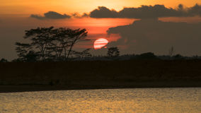 Full sunset. Natural full sunset with landscape Stock Photography