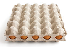 Full tray of chicken eggs Royalty Free Stock Photo