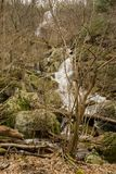 Full View of Apple Orchard Falls royalty free stock photos