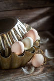 Full of vitamins and ecological eggs in the kitchen Stock Images