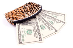 Dollars in the wallet Royalty Free Stock Images