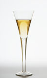 Full wine glass of champagne Royalty Free Stock Photography