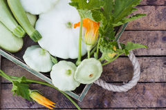 Full wooden box of green courgettes and squashes on the wooden background. Top view Stock Photo