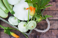 Full wooden tray of courgettes and squashes Royalty Free Stock Image