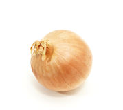 Full yellow onion Stock Image