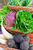 fulla grönsaker för korg Royaltyfria Bilder