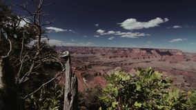 FullHD shot of the Grand Canyon stock video