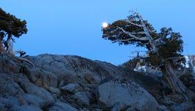 Fullmåne över det carson passerandet Arkivfoto