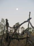 Fullmåne över det lantliga staketet Royaltyfri Fotografi