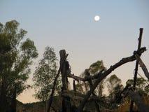 Fullmåne över det lantliga staketet Arkivbild