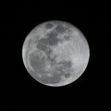 fullmåne Arkivfoto