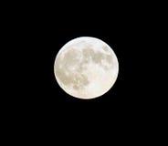 Fullmåne i September Arkivbild